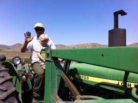 farm 317sm